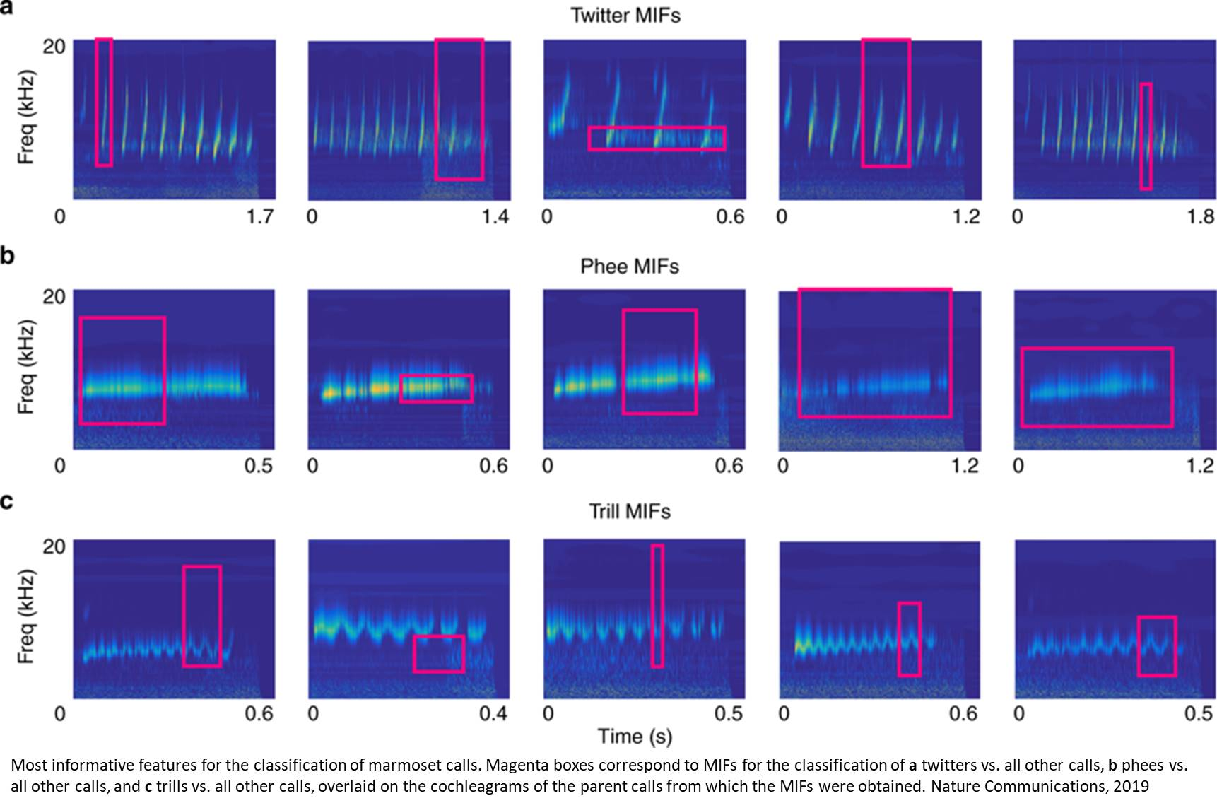 Computational model for speech recognition