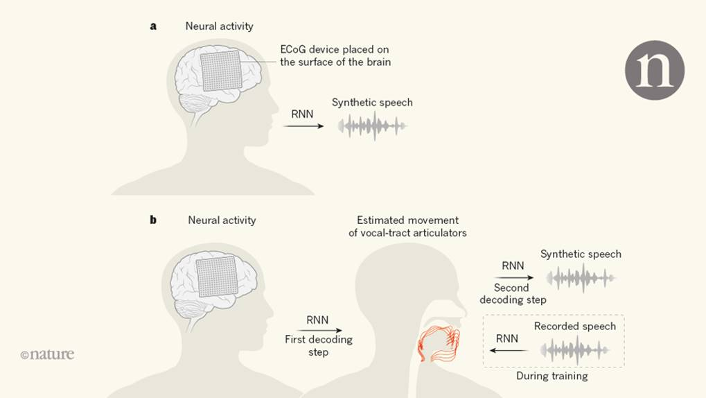 Directly decoding speech from brain activity!