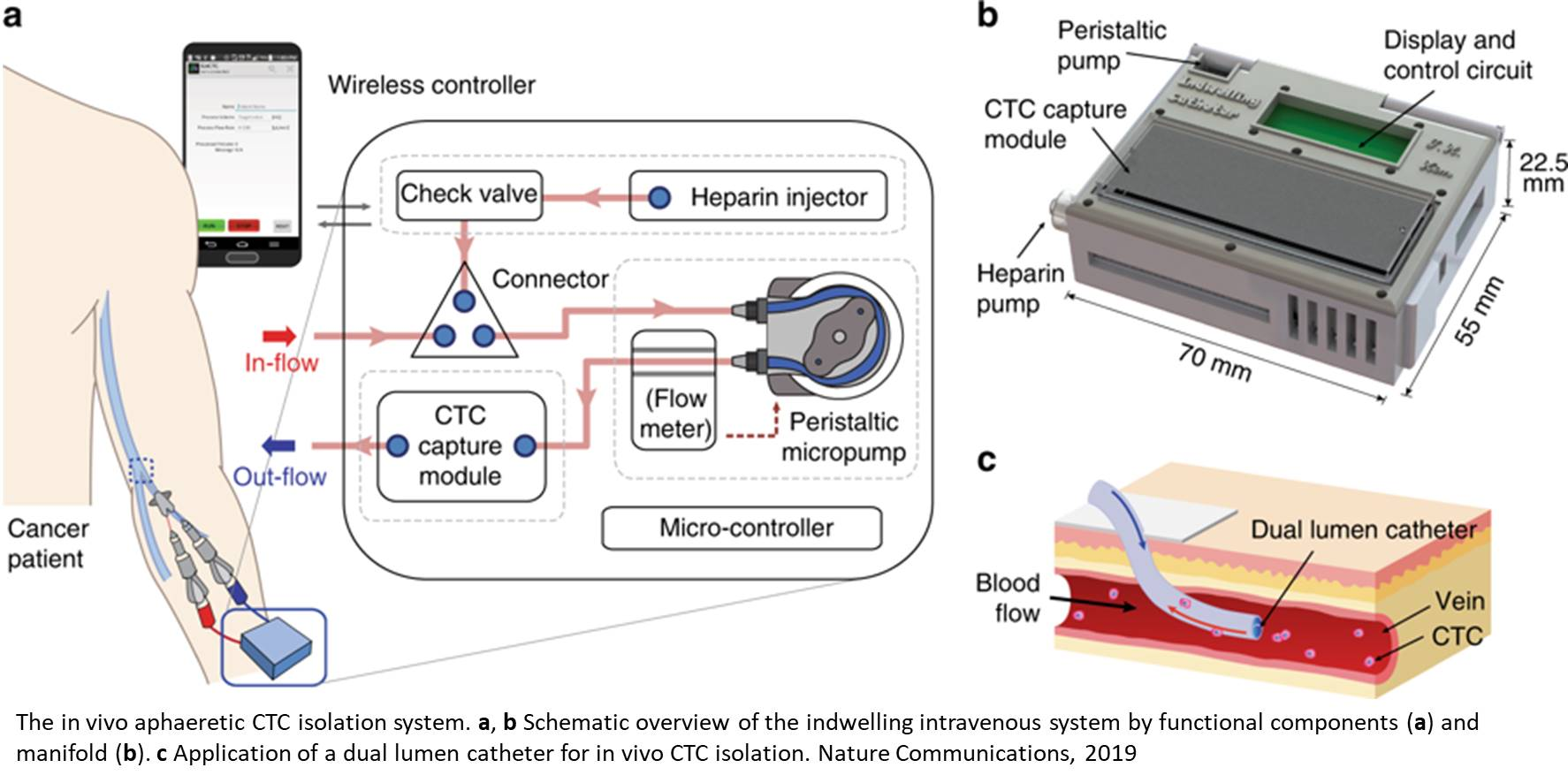 'Wearable' device captures cancer cells from blood