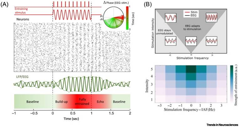 Modulating human memory via rhythmic control of brain waves