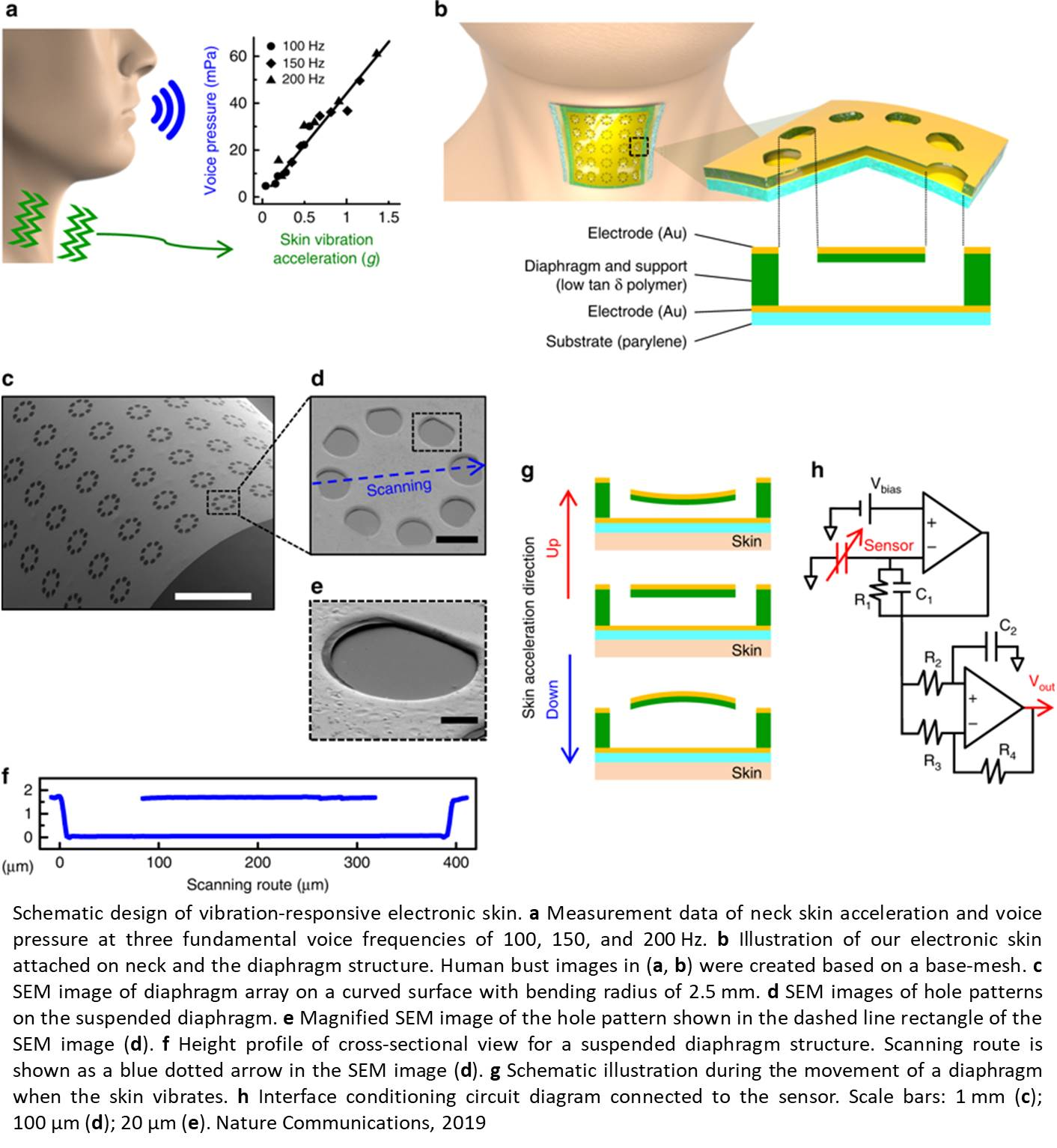 A wearable electronic skin for quantitative vocal recognition