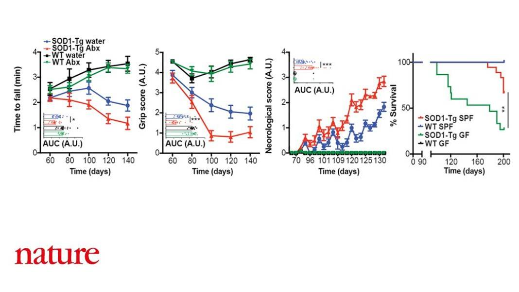 ALS progression linked to microbiome!
