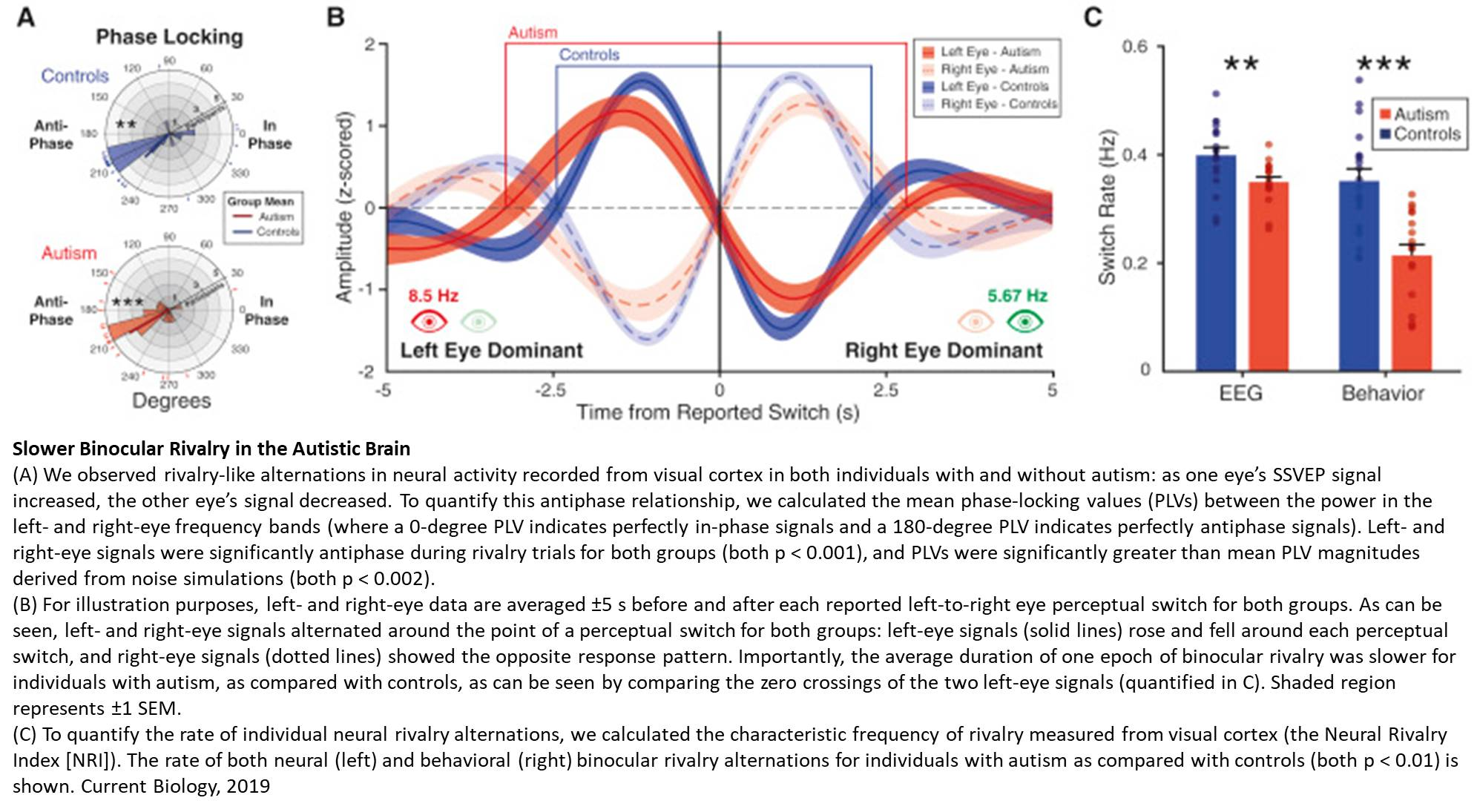 Eeg Signals Accurately Predict Autism >> A Visual Test To Help Screen For Autism Science Mission