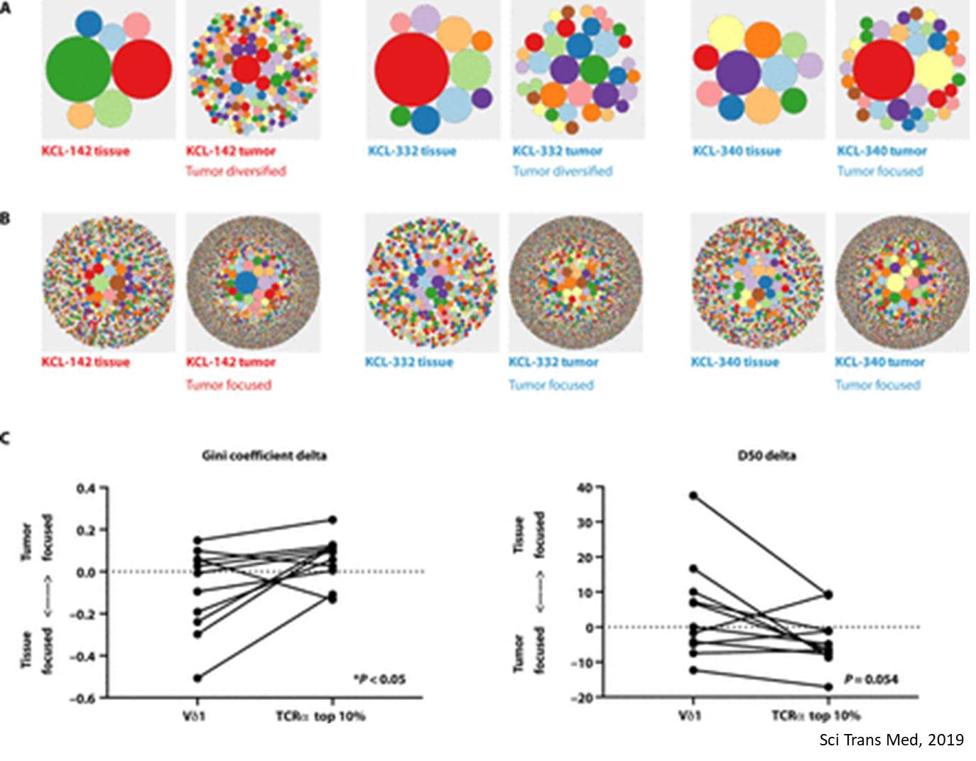 Predicting chemotherapy response using patient-derived organoids