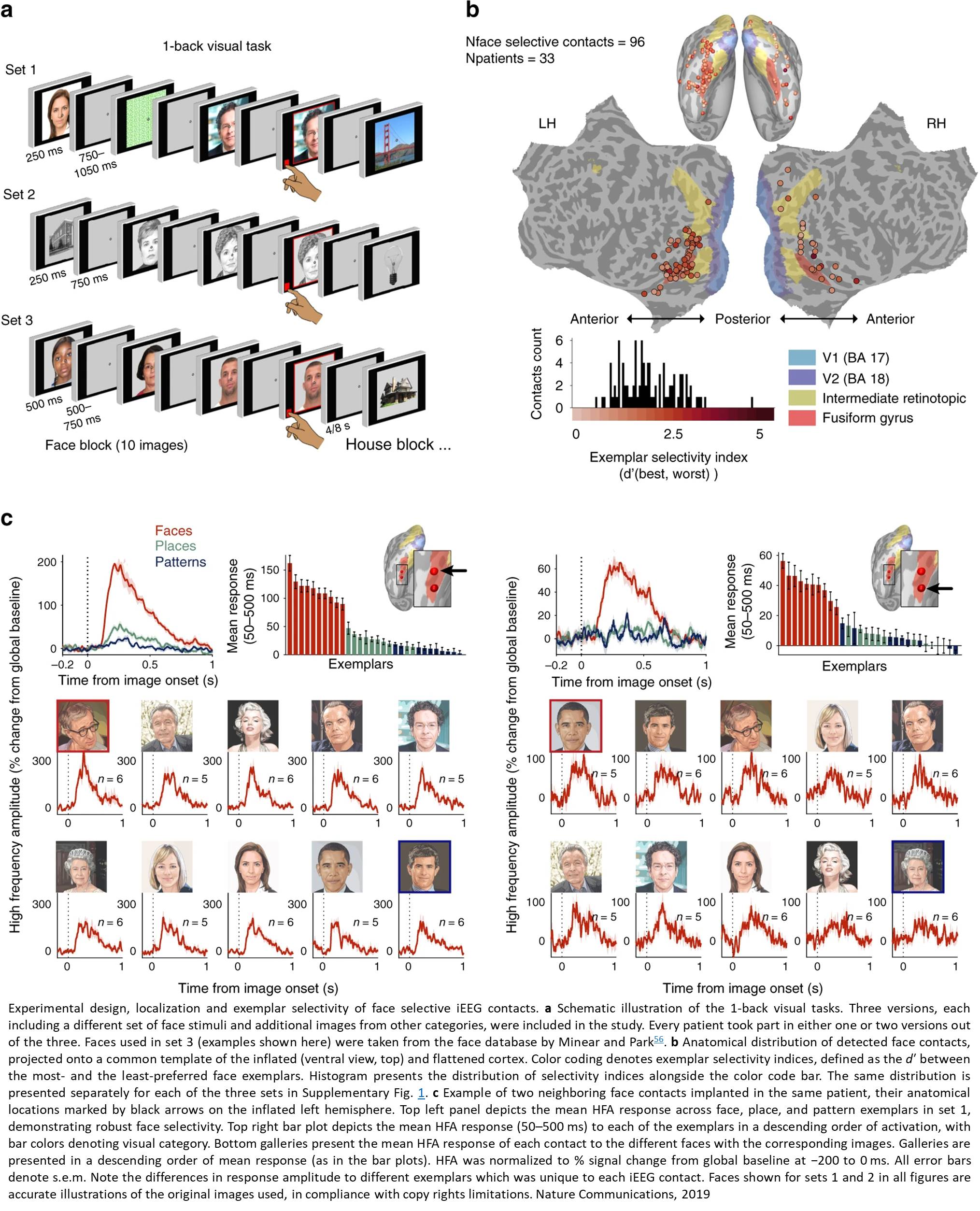 Human face recognition with artificial networks