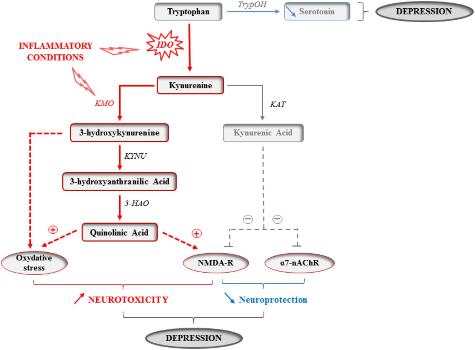 A new biochemical marker of early-stage depression