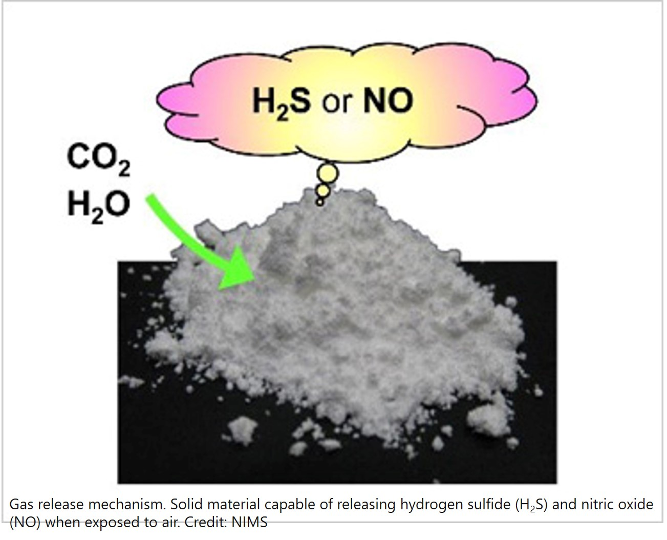 Development of a solid material capable of slowly releasing H2S and NO