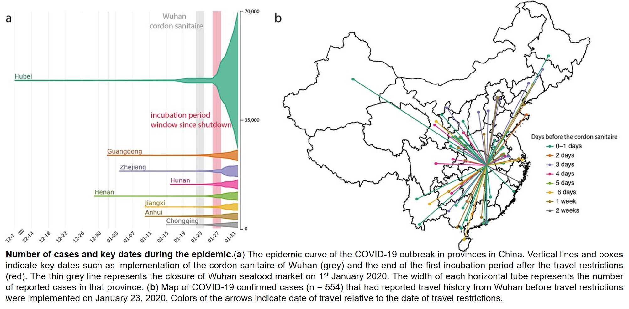 Travel restrictions are most useful in the early and late phase of COVID-19 epidemic