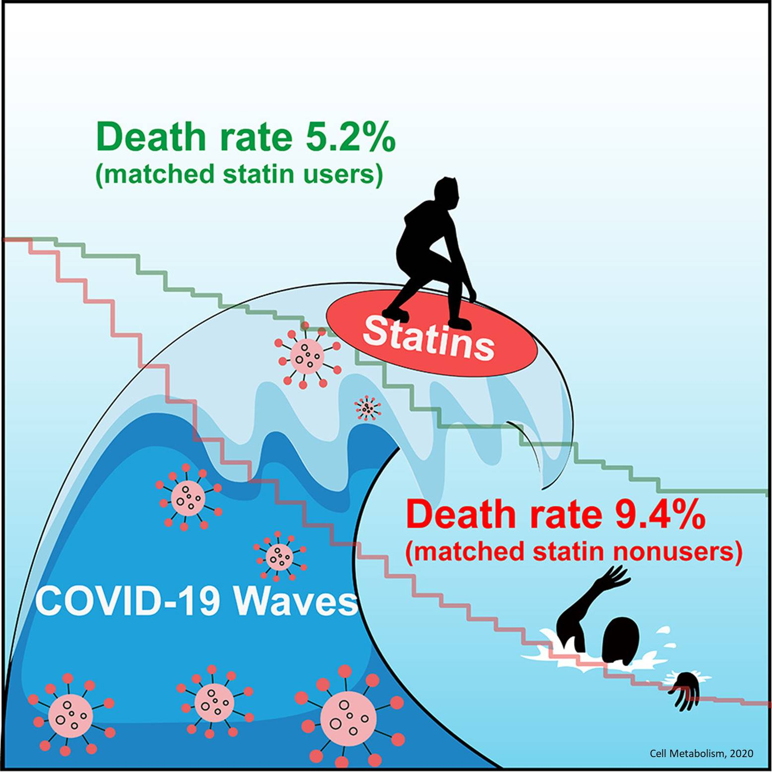 Statin use is linked to lower death rate in hospitalized COVID-19 patients