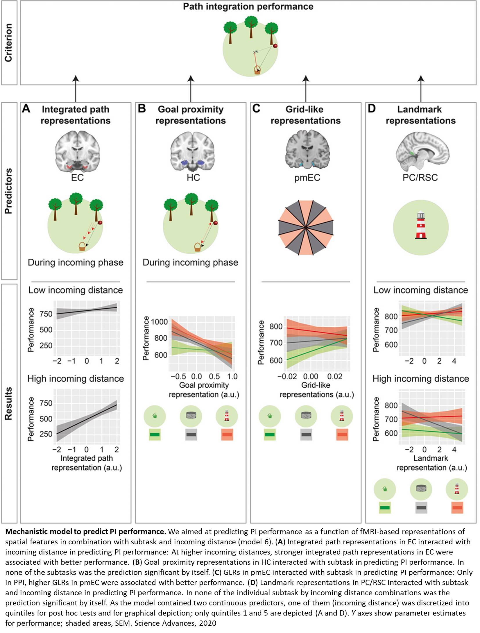 Path integration deficit in people with increased risk of Alzheimer's