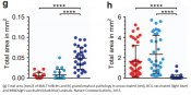 Protection against a lethal TB using attenuated Mycobacterium tuberculosis
